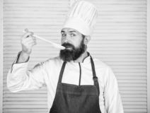 Cooking as professional occupation. Hipster bearded chef hold wooden spoon. Kitchenware and cooking concept. Lets try. Taste. Add some spices. Man with beard in royalty free stock photos