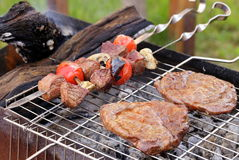 Cooking on the barbecue grill assortment  steak and skewers Stock Photography
