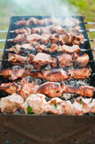Cooking barbecue or shashlik on spit. Picnic on weekend. Outdoor Stock Photo