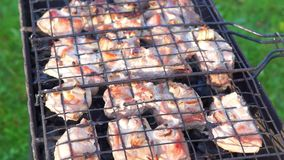 Cooking barbeque on coal heat of brazier stock video