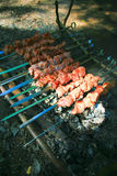 Cooking barbeque pork on skewers over a fire Stock Photo