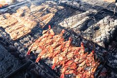 Cooking BBQ sea food on fire stock photos