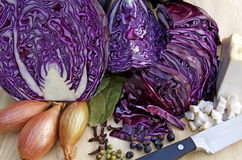 Cooking blue cabbage Stock Photo