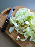 Cooking cabbage Stock Photo