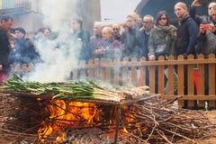 Cooking calsot on open fire during Calcotada Stock Photos