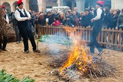 Cooking calsot on open fire during Calcotada. VALLS, SPAIN - JANUARY 26, 2014: Calcotada - popular gastronomical event in Catalonia. Cooking calsot on open fire royalty free stock images