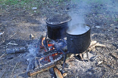 Cooking on camp fire. Stock Photos