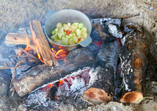 Cooking on campfire at picnic, food prepared in pot on wood, potatoes and tomatoes, healthy vegetarian food Stock Images