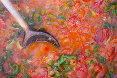 Cooking casseroles. Cooking tomatoes, peppers and onions Stock Photography