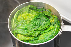 Cooking chard. Cooking leafy green swiss chard in pot Stock Photos