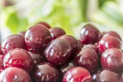 Cooking cherry jam.Cooking cherry jam.Wet deep red berries on a background of green leaves . royalty free stock photo