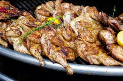 Cooking chicken on a barbecue grill. stock photography