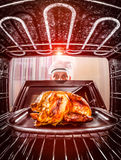 Cooking chicken in the oven. Stock Images