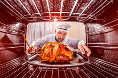 Cooking chicken in the oven. Royalty Free Stock Photos