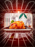 Cooking chicken in the oven. Stock Photo
