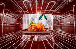 Cooking chicken in the oven. Stock Photography