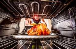 Cooking chicken in the oven at home. royalty free stock image
