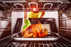 Cooking chicken in the oven at home. Stock Photos