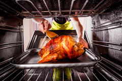 Cooking chicken in the oven at home. Royalty Free Stock Photos