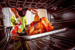 Cooking chicken in the oven at home. Royalty Free Stock Images