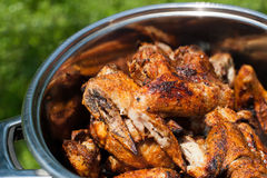Cooking chicken wings at outdoors grill Stock Image