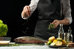 cooking the chief of fresh fish, the chef sprinkles the seasoning fish on a black background with lemons, limes, rosemary and thym stock photos