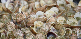 Cooking clams Royalty Free Stock Images