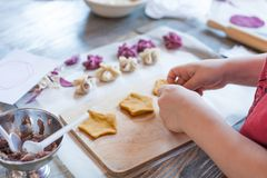 Cooking class, culinary. Food and people concept, molding of pelmeni or meat colorful dumplings, set of funny original colorful. Pelmeni Stock Image