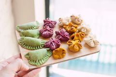 Cooking class, culinary. Food and people concept, molding of pelmeni or meat colorful dumplings, set of funny original colorful. Pelmeni Stock Photos