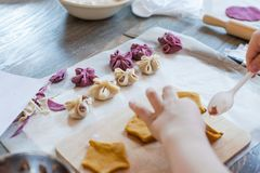 Cooking class, culinary. Food and people concept, molding of pelmeni or meat colorful dumplings, set of funny original colorful. Pelmeni Royalty Free Stock Photos