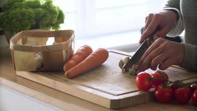 cooking Close-up van het Snijden van Verse Organische Groenten stock video