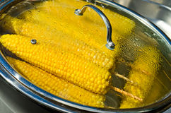 Cooking corn Royalty Free Stock Photography
