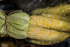 Cooking Corn on the cob Royalty Free Stock Photos