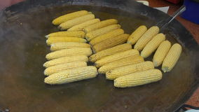 Cooking corn cobs on big metal pot in fair stock footage