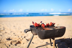 Cooking crayfish on the beach Royalty Free Stock Photos