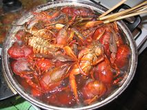 Cooking of crayfish. Boiled crayfish, crab, lobster, spiny lobster Stock Image