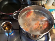 Cooking crayfish. Red crayfish in a boiled bowl. Near, some brandy (tzuica in romanian Royalty Free Stock Photo