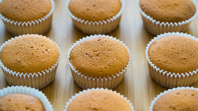 Cooking cupcakes without cream. Muffins without cream ready for decorating Royalty Free Stock Image