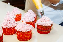 Cooking cupcakes at home. Pink Cream Baking Decoration.  stock image