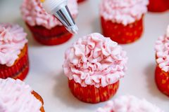 Cooking cupcakes at home. Pink Cream Baking Decoration.  royalty free stock photos