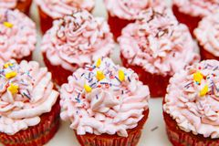 Cooking cupcakes at home. Pink Cream Baking Decoration stock photography