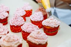 Cooking cupcakes at home. Pink Cream Baking Decoration.  royalty free stock photography