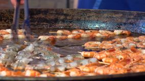 Shrimps prawns grilled with spices stock footage