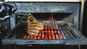 Cooking delicious juicy meat steaks and sausages on the grill on fire and Barbecue Smoker for smoke roasting. Cooking delicious juicy meat steaks and sausages stock photo