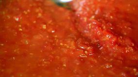 Cooking delicious tomato sauce. Closeup stock footage