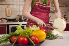 Cooking dinner Stock Images