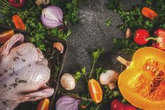 Cooking dinner for christmas, Thanksgiving. Traditional autumn ingredients are vegetables, pumpkin, mushrooms, chicken or turkey, fresh herbs, spices. On a stock photos