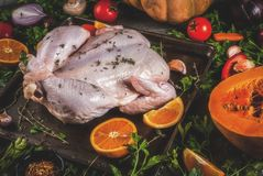 Cooking dinner for christmas, Thanksgiving. Traditional autumn ingredients are vegetables, pumpkin, mushrooms, chicken or turkey, fresh herbs, spices. On a stock photography