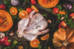 Cooking dinner for christmas, Thanksgiving. Traditional autumn ingredients are vegetables, pumpkin, mushrooms, chicken or turkey, fresh herbs, spices. On a royalty free stock image