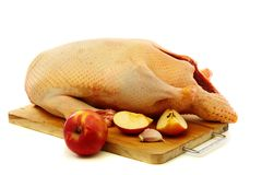 Cooking duck with apples. Stock Photos